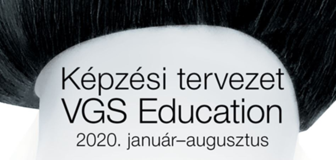 VGS_Education_2020_cover